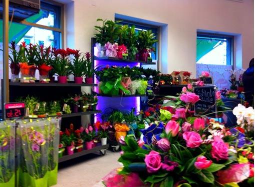 aprire-negozio-fiori